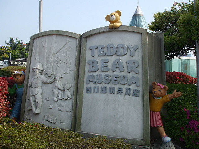 Jeju Teddy Bear