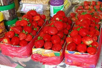 philippines baguio strawberry farm la trinidad benguet