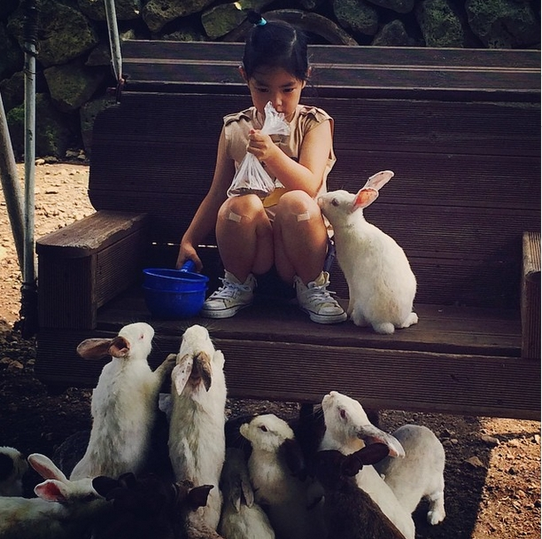 Haru Pencinta hewa_kelinci
