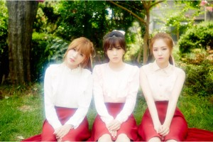 apink-5th-mini-album-3 (1)